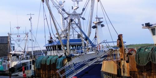 trawlers-13331